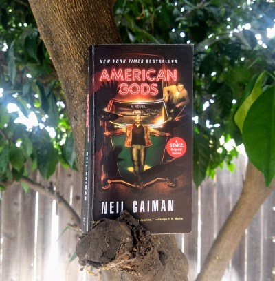 Book Review: American Gods by Neil Gaiman